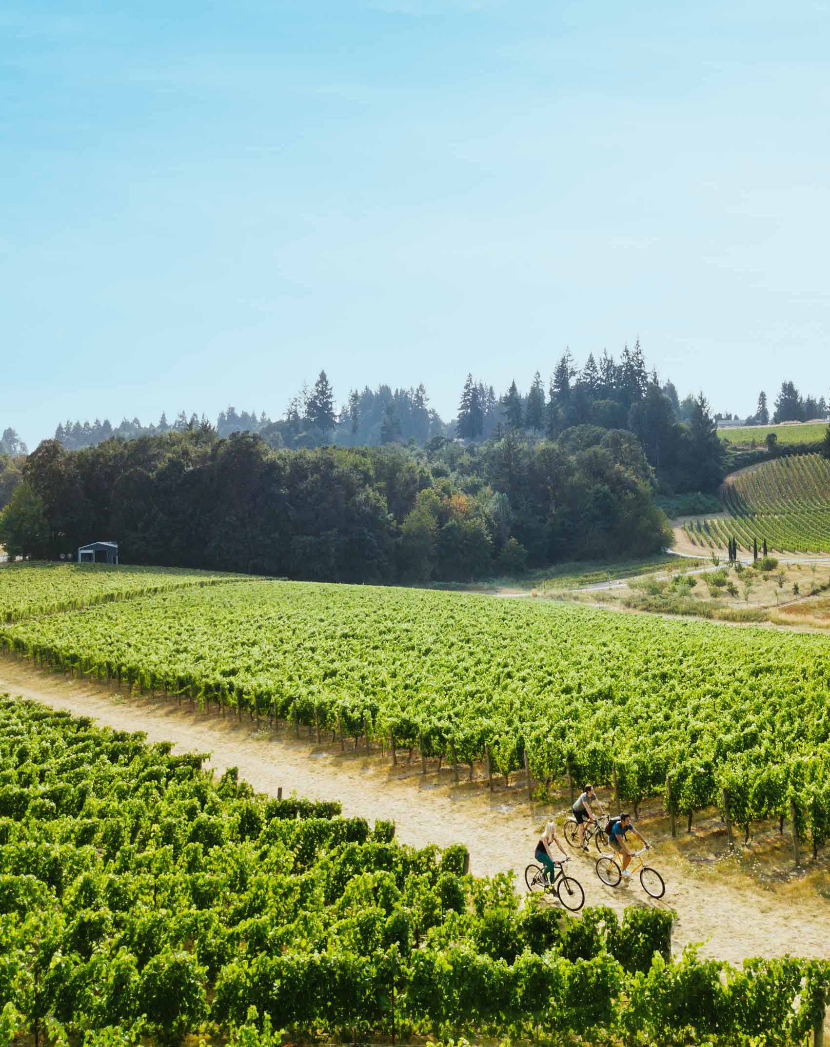 Portland Monthly: Oregon Wine Country