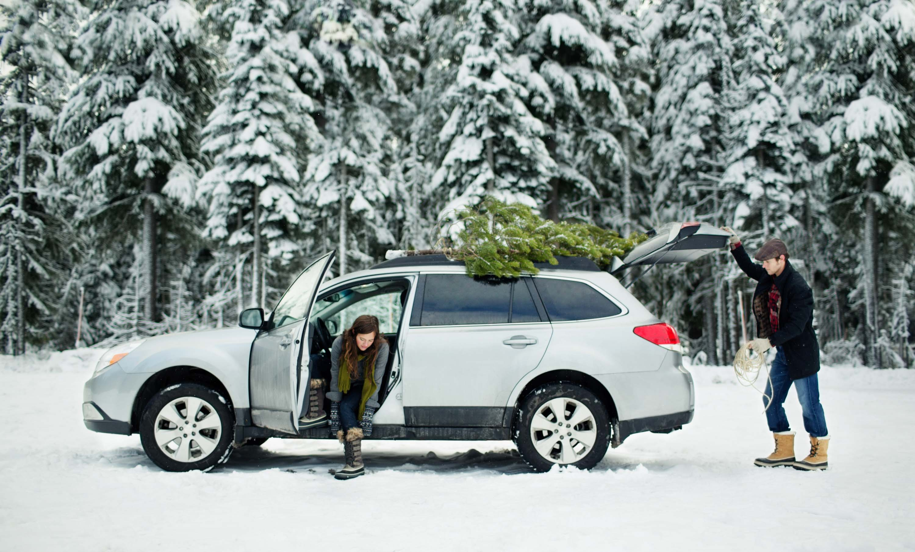 Subaru Outback - Christmas Tree