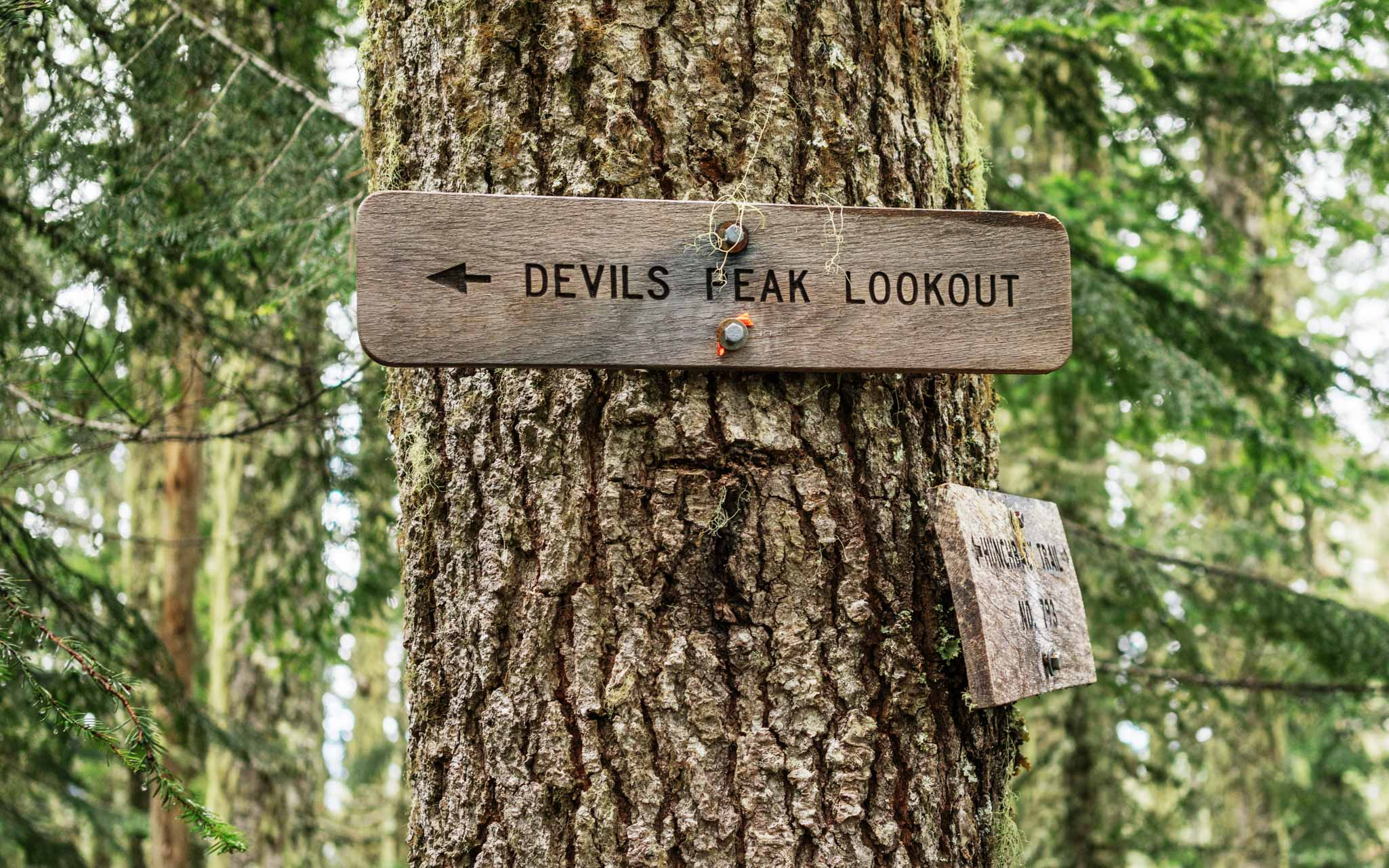 Devils Peak Lookout sign