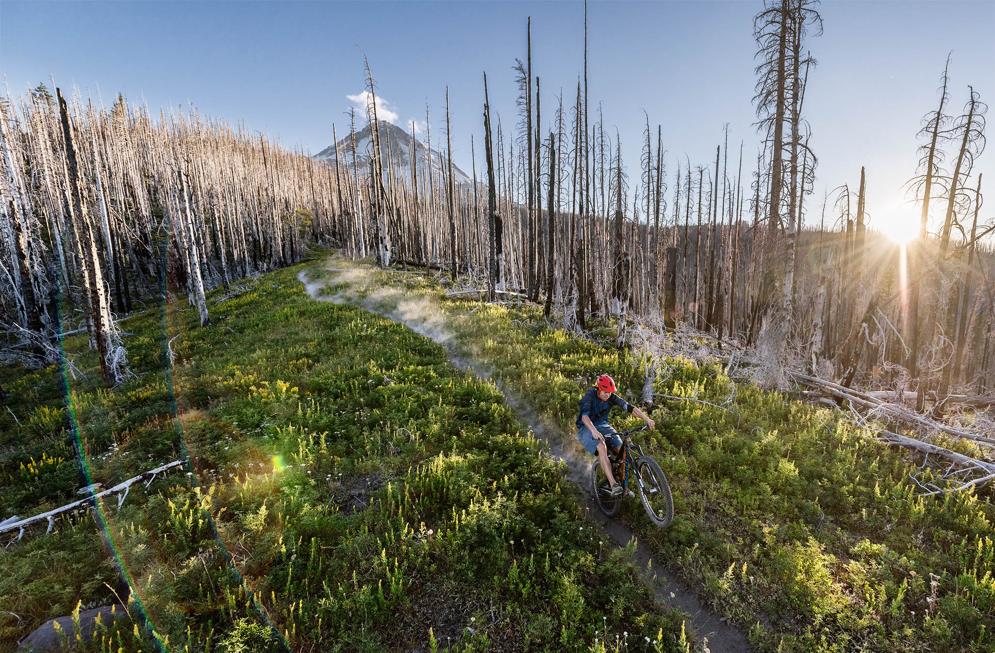 Mountain biker riding down Mt. Hood trail